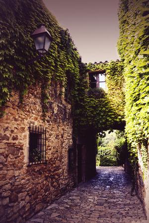 Narrow street, stone pavement full of ivy in Peratallada, Spain Stock Photo