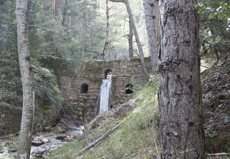wall with a waterfall in the middle of a forest with a trunk fall, pyrenees 스톡 콘텐츠