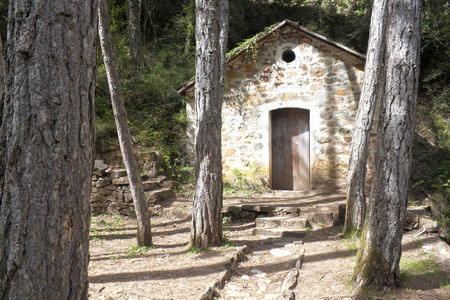 house in the middle of the forest made of stone