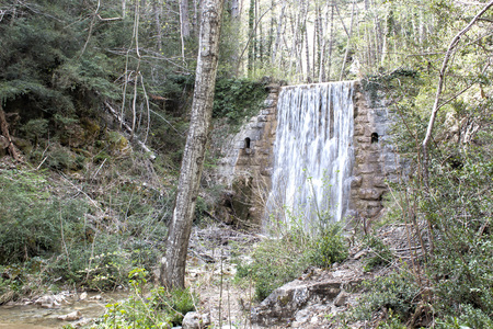wall with a big waterfall in the middle of a forest with a trunk fall, pyrenees
