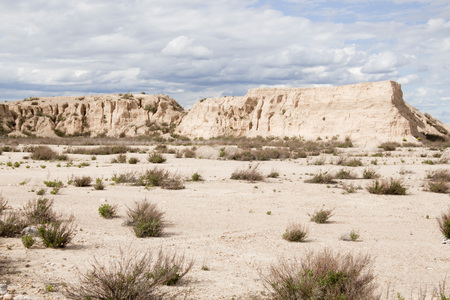 desert landscape with bushes in an arid earth in Spain