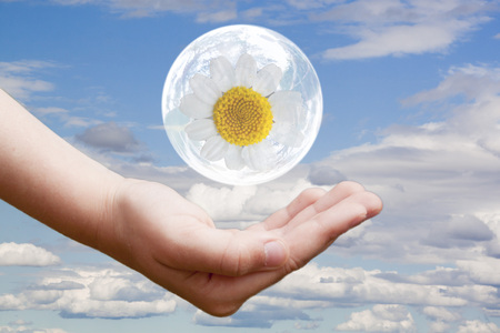 daisy flower in a bubble over a hand 스톡 콘텐츠