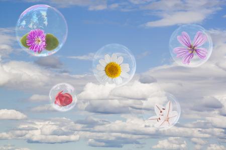 Five flowers inside five bubbles in the sky flying