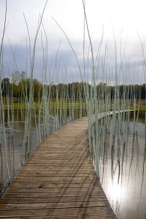 landscape of a lake with a path and sticks