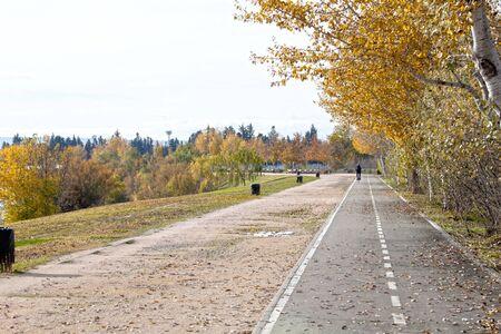 Bikeway with a bike in a park full of trees in Zaragoza, Spain