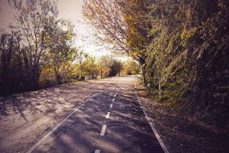 Bikeway in a park full of trees in Zaragoza, Spain