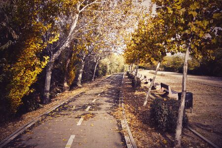 retro Bikeway in a park full of trees in Zaragoza with benches, Spain Stock fotó