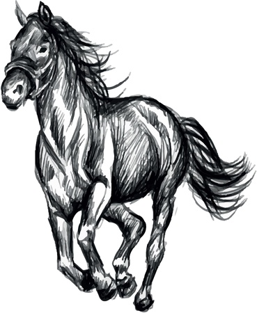 Horse running Stock Vector - 17983243