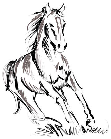line drawings: horse illustration Illustration