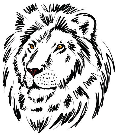 oeil dessin: illustration du lion