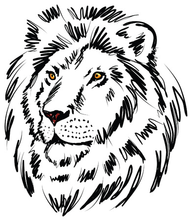 freehand drawing: lion illustration