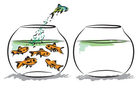 fish aquarium business concept