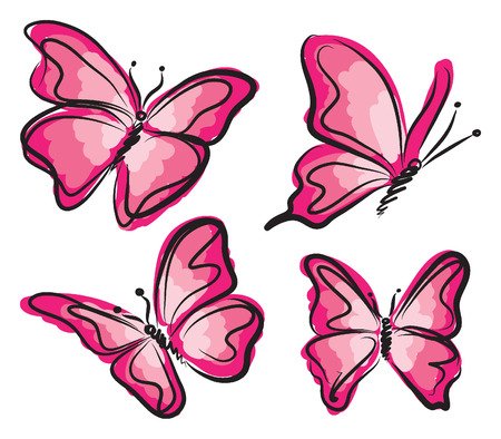 colorful butterfly: pink butterfly illustration