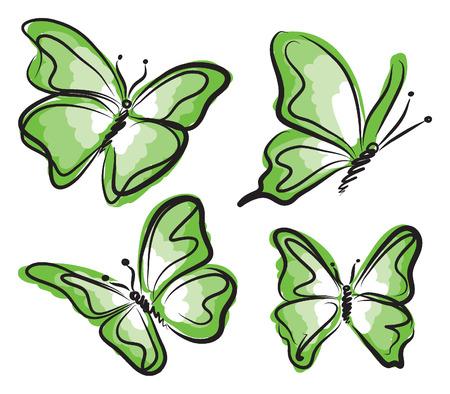 illustratin: green butterfly illustration Illustration