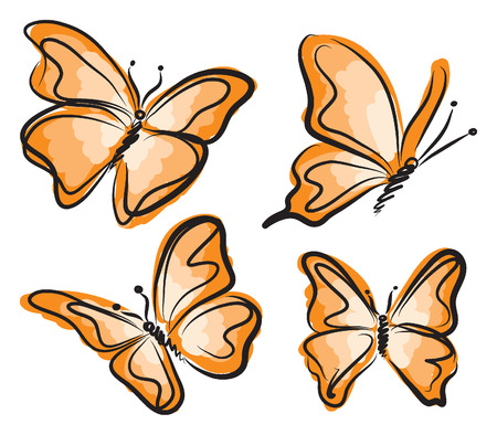 illustratin:  orange butterfly illustration