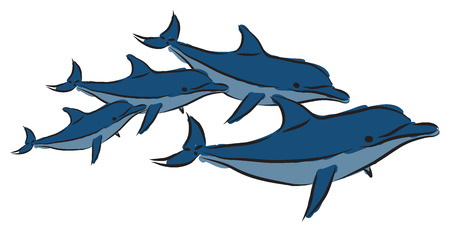 dolphins illustrations Vector