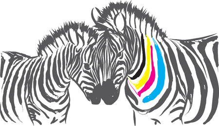 color cmyk zebra illustration