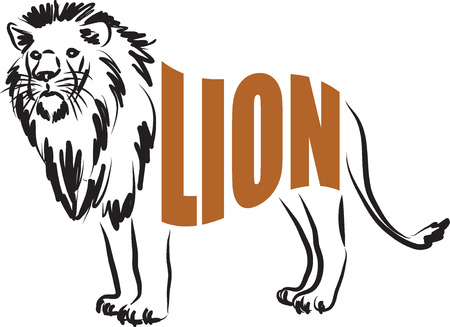 royal safari: LION  text illustration Illustration