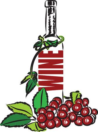 red grape: WINE ILLUSTRATION LETTERING