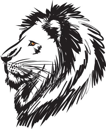 cabeza: ilustración cabeza de león Vectores