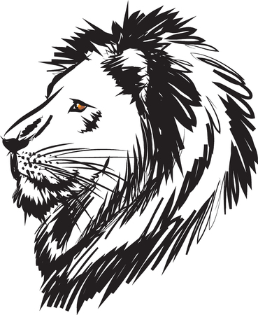 lion head illustration