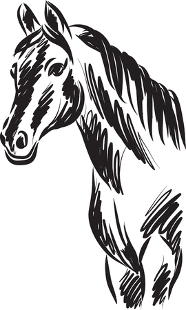 horse vector drawing illustration