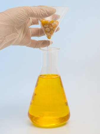 Result of biofuel from corn seeds made in laboratory photo