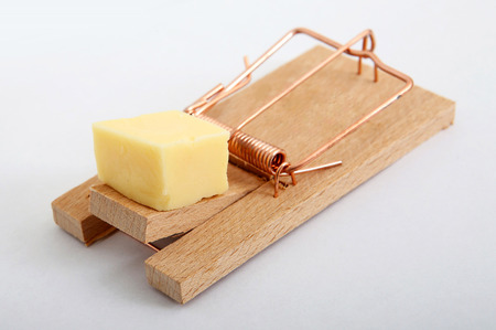 A mousetrap with cheese on it, isolated closeup