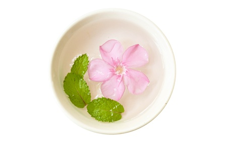 floating flower and green leaf