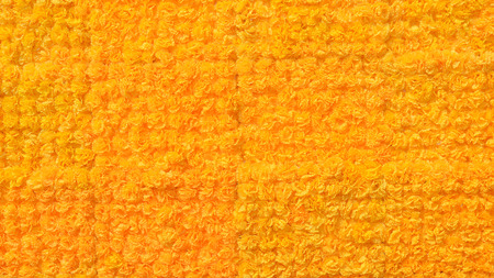 texture of yellow marigolds   photo