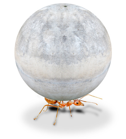 lifting globe: mighty ant holding heavy stone on white background Stock Photo