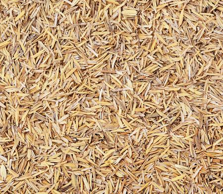 padi: Rice husk texture,Thailand