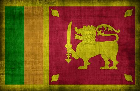 retrospective: Sri Lanka flag pattern ,retro vintage style