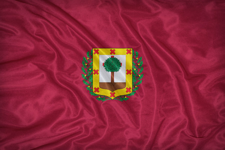 foreign land: Biscay , Vizcaya flag on fabric texture,retro vintage style Stock Photo