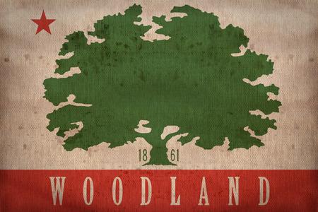 california flag: Woodland ,California flag on fabric texture,retro vintage style