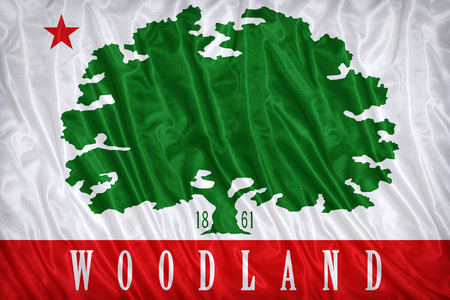 california flag: Woodland ,California flag pattern on the fabric texture ,vintage style Stock Photo