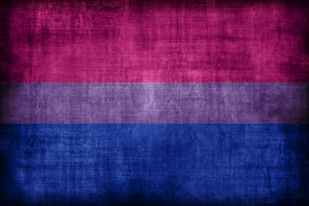 Bisexual flag , retro vintage style Banco de Imagens