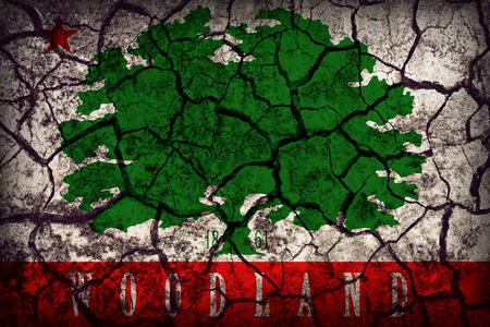 california flag: Woodland ,California flag pattern on crack soil texture,retro vintage style