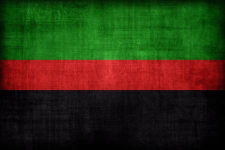 afrika: Republic of New Afrika flag pattern , retro vintage style