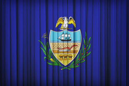 allegheny: Allegheny County , Pennsylvania flag pattern on the fabric curtain,vintage style