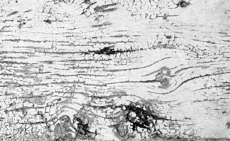 peeling paint: Peeling paint on old wooden