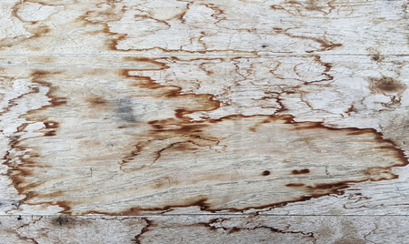 textured: Textured old wooden background Stock Photo