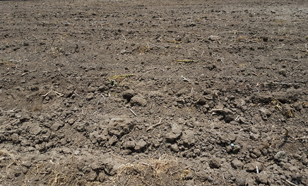 the ploughed field: soil of ploughed field