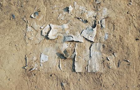 disintegrating: Disintegrating cardboard on the ground
