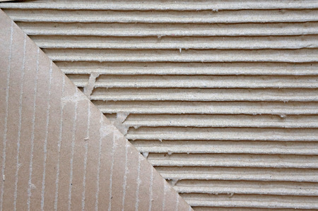 torn edges: Old textured cardboard sheet with torn edges