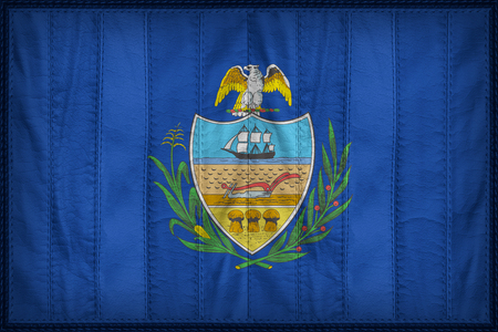 allegheny: Allegheny County flag pattern on synthetic leather texture