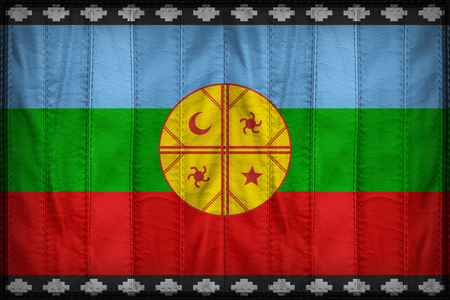 Mapuches flag pattern on synthetic leather texture