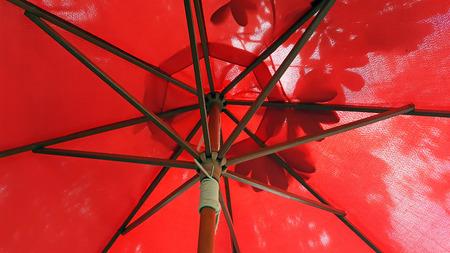 view under the umbrella