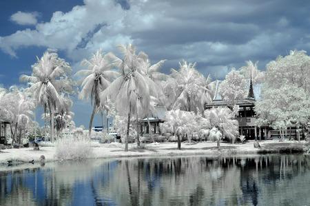 Public park in Nonthaburi province,Thailand taken in Near Infrared