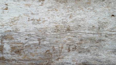 old grunge wood texture 写真素材